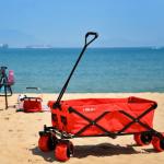 Chariot de plage